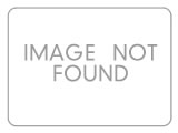 office employees carrying moving boxes